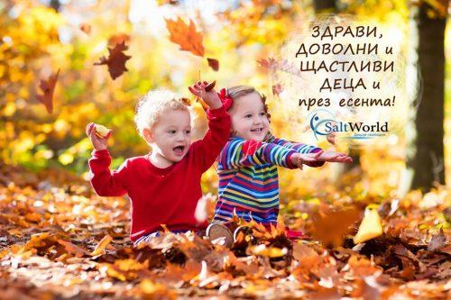 44664312_553715321744398_681192550563840000_n